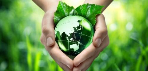 India's low carbon revolution 'encouraging investment'